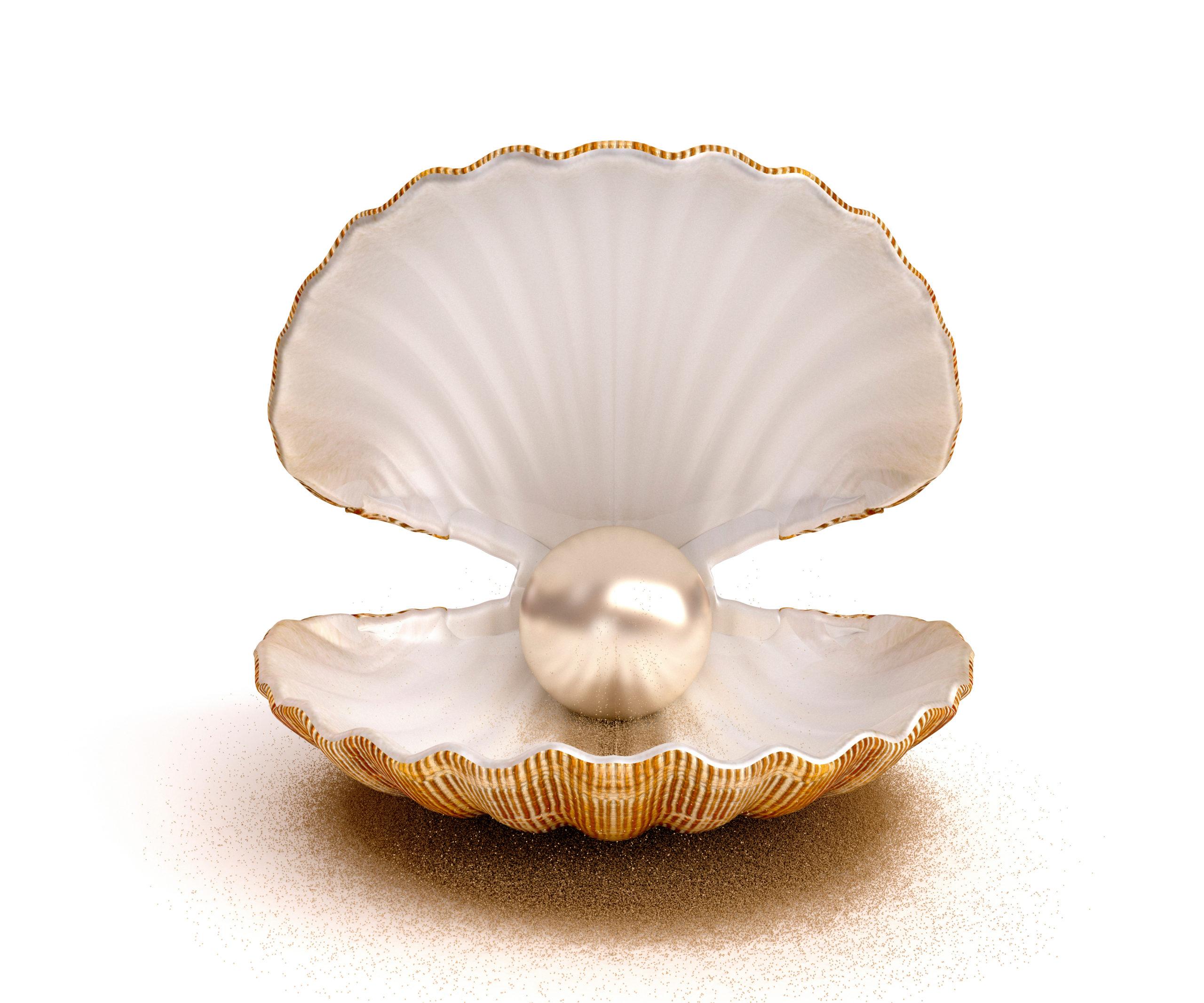 質のいい真珠って? 押さえておきたいパールの見極め方と選び方とは